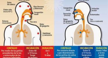 Imagen de Gripe o resfriado (Foto: Notimex)